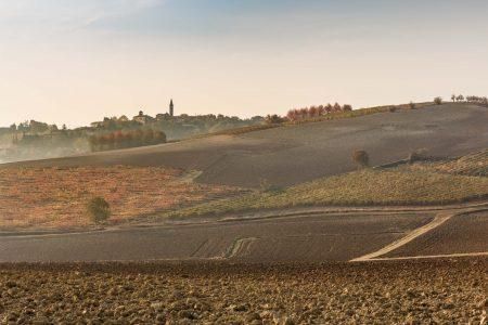Colline Tenuta della Mandoletta Bonzano Vini Monferrato