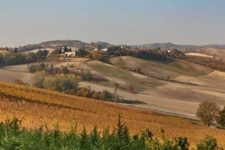 Colli Tenuta della Mandoletta Bonzano Vini Monferrato
